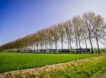 Paris-Roubaix - 1343